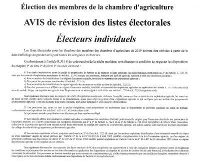 Avis revision electeurs individuels